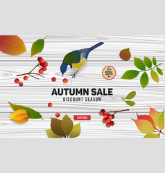 Autumn sale banner design with titmouse vector