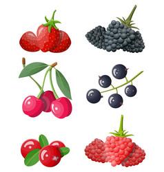 berry icon set vector image