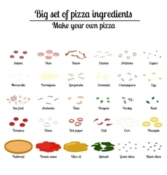 Big set of ingredients for pizza vector image