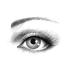 Eye hand-drawn vector image vector image