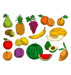 Flavorful and sweet fruits retro colored sketches vector
