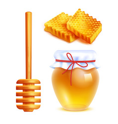 honey realistic icons set vector image