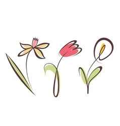 outlined hand drawn flower collection design vector image
