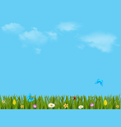 colorful with beautiful meadow and blue sky vector image