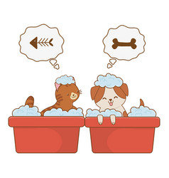 Cute funny pets cartoon vector