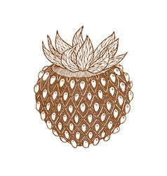 hand drawn isolated strawberry in zentangle style vector image