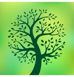 Organic green tree eco emblem vector image
