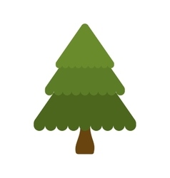 pine tree merry christmas celebration icon vector image