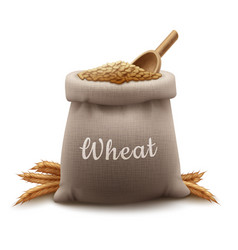 Realistic sack of wheat grain vector