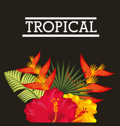 tropical flower leaves card vector image vector image