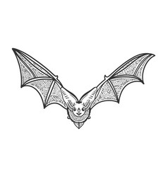 flying bat sketch vector image