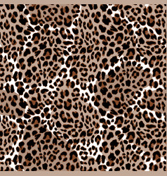 Leopard or jaguar seamless pattern modern animal vector