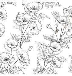 pattern of poppy flowers on a white background vector image