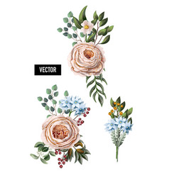 set bouquets with peachy english roses vector image