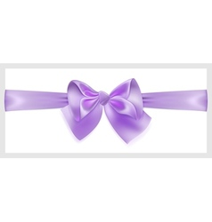 Violet bow with ribbon located horizontally vector image