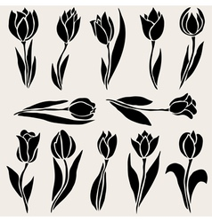 decorative tulips set vector image vector image
