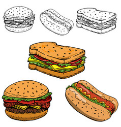hamburger sandwich hot dog hand drawn isolated on vector image vector image