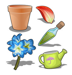 growing flowers concept and make perfume vector image vector image