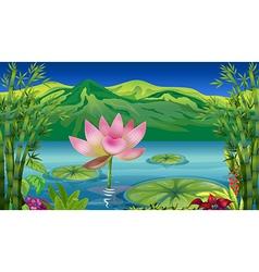 Cartoon Lotus Flower vector