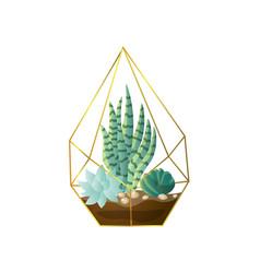 Green succulent plant pot in geometric gold vector