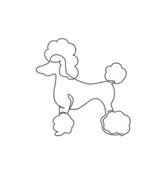 one single line drawing simple cute poodle vector image