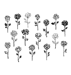 set rose icons vector image