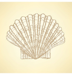 Sketch sea shell in vintage style vector image