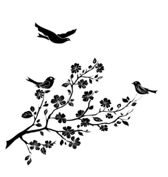 Twig cherry blossoms and birds vector