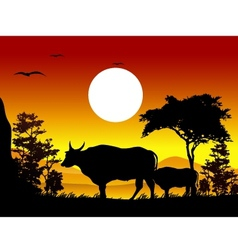 cow silhouettes with landscape background vector image vector image