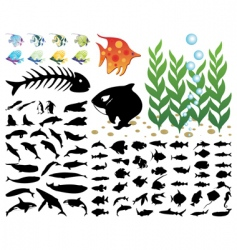 sea collection vector image vector image