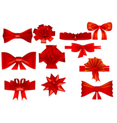 set of various bows vector image