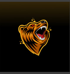 bear head mascot logo icon vector image