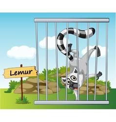 Cartoon Zoo Lemur vector
