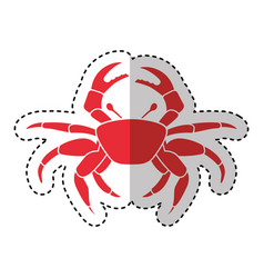 crab sealife isolated icon vector image