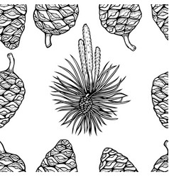 hand drawn conifer trees cones sketch vector image