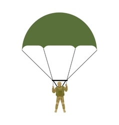 Military Parachutists vector image