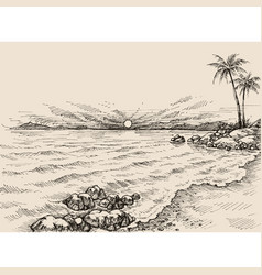 sunrise on beach drawing sea view and palm vector image