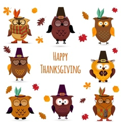 thanksgiving day cute owl set vector image