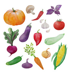 Vegetables watercolor collection vector