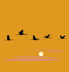crane pack and sunset vector image