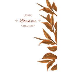 Black tea banner vector