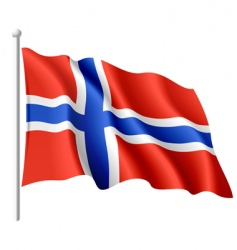 Flag of norway vector