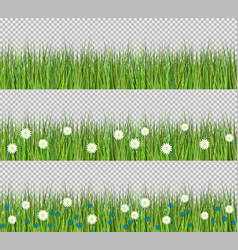 green grass and flowers border set of flat vector image