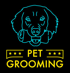 Pet grooming neon sign vector