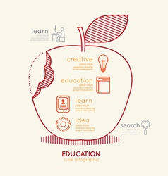 Flat linear Infographic Education Apple Outline vector image vector image