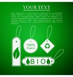 Eco tags flat icon on green background vector image