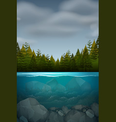 An underwater nature landscape vector
