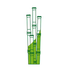 Bamboo forest set spa nature plant tree with vector