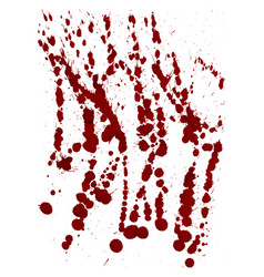 dry blood splatter isolated on white background vector image