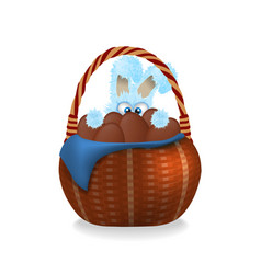 Fluffy easter bunny is looking out wicker basket vector
